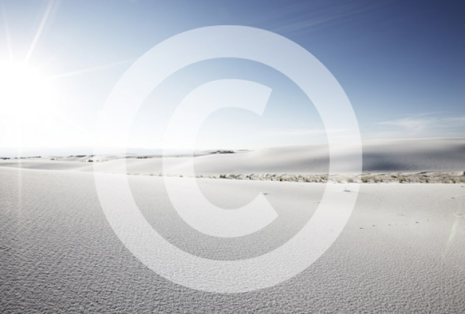 Design a transparent watermark to 20 pictures for you to use in less then 24 hours