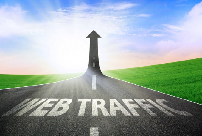 provide unlimited website TRAFFIC for 12 months