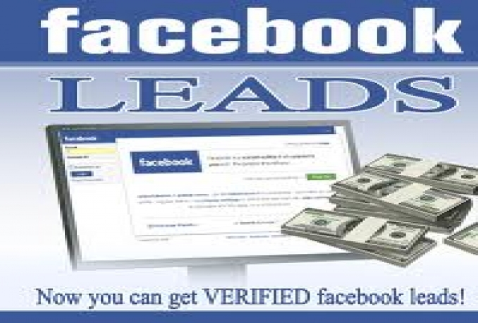 generate 200 facebook leads from your selected niches