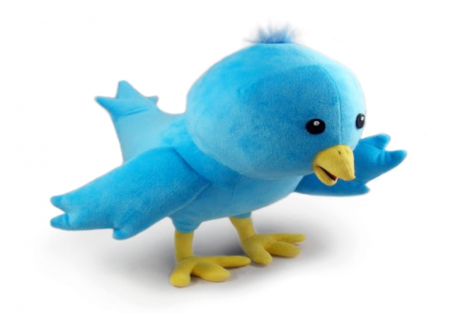 send you 14000+ REAL Twitter followers within 24 hours