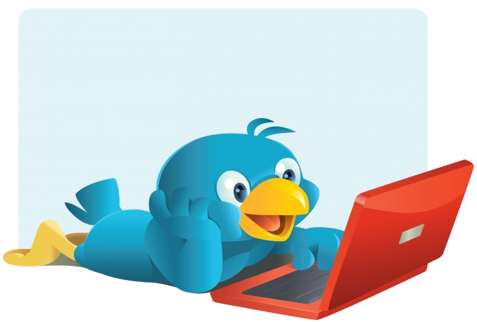 send you 18000+ REAL Twitter followers within 24 hours