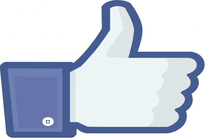 provide 500 real french facebook likes