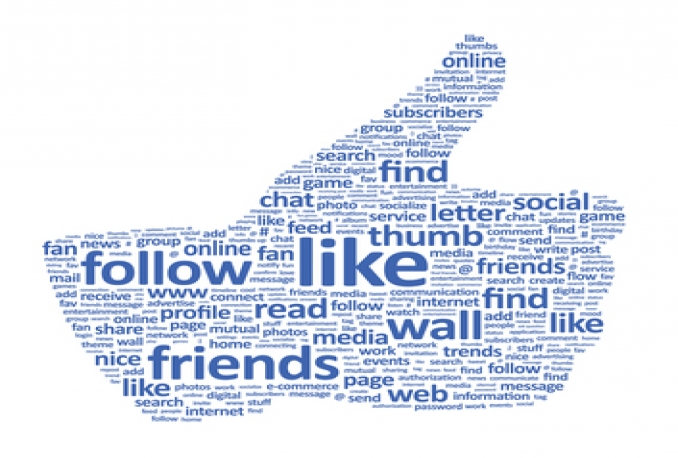 give you 5000 facebook website likes