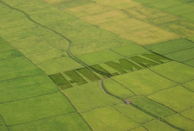 make crop circle effect with your logo
