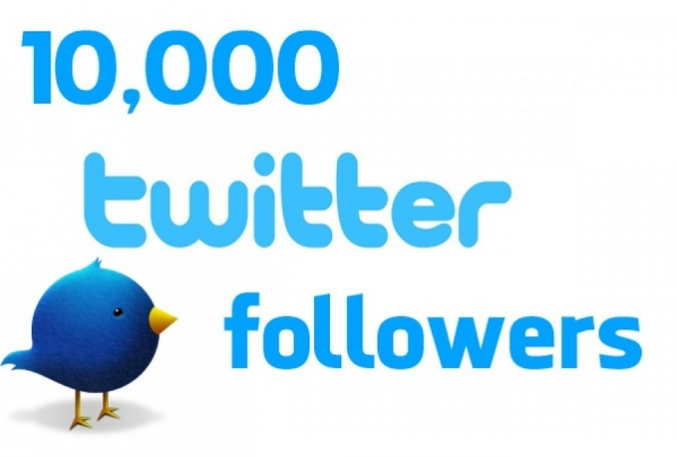 Provide You 10,000 Real Human Unique Active Twitter Followers 100% Safely
