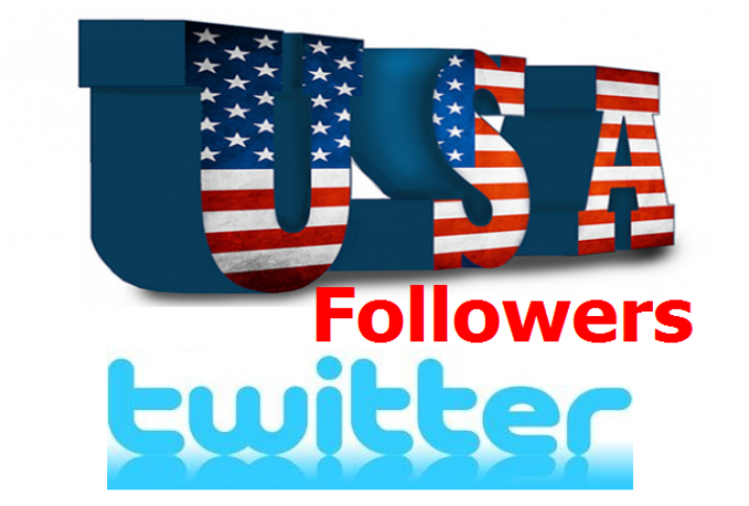 give you 1000+ Safe Real Looking USA Twitter Followers in less than 24h