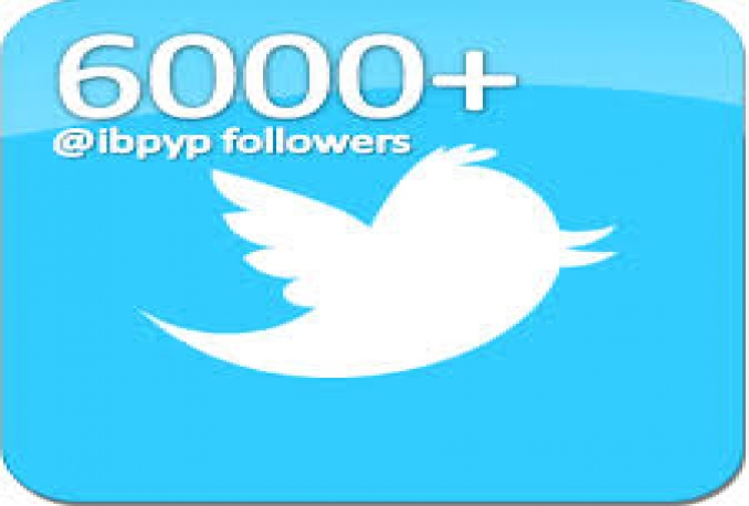 give you High Quality 10000+ Twitter follower
