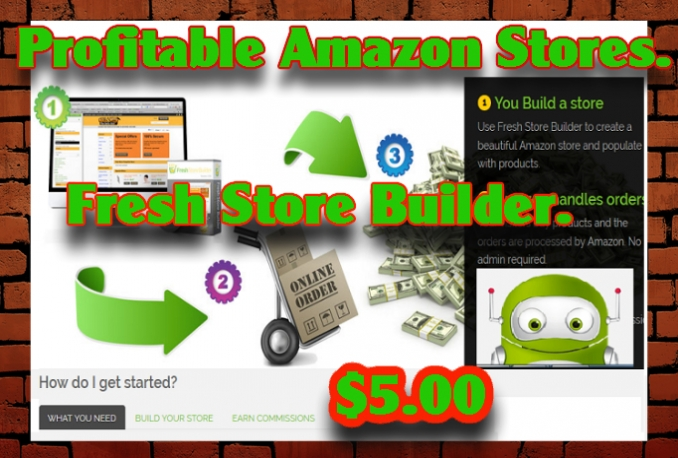 Setup Amazon High Converting Fresh store In Any Niche