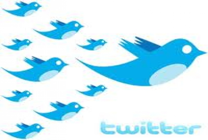 give you 120 REAL TWITTER followers within 5 hours