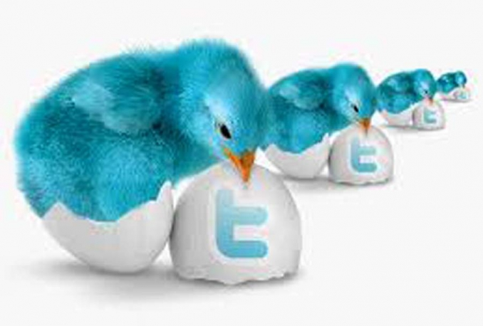 give you 5 USA twitter account loaded with 250 0 each REAL active twitter followers