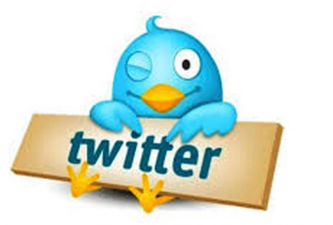 475 followers on twitter within 2 days NO admin access