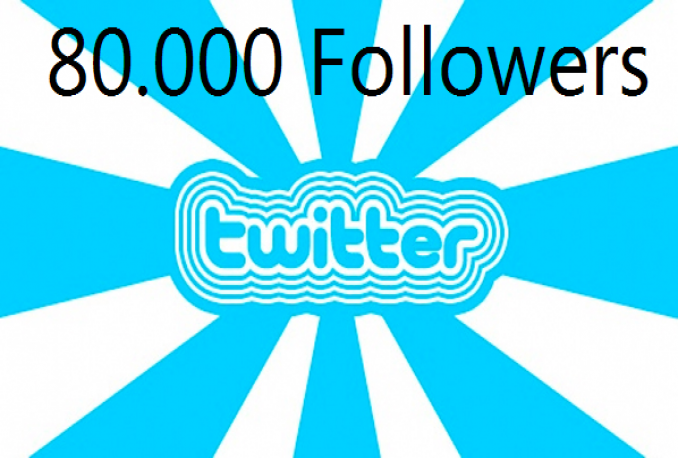 provide you 80,000+ real Twitter Followers