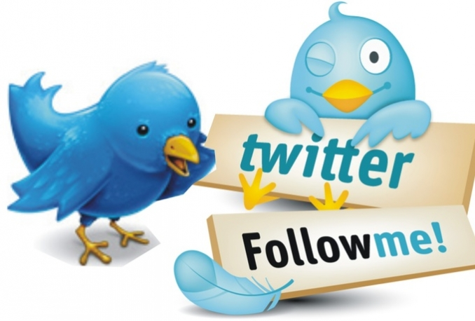 provide guranteed 5,000+  twitter followers in your account