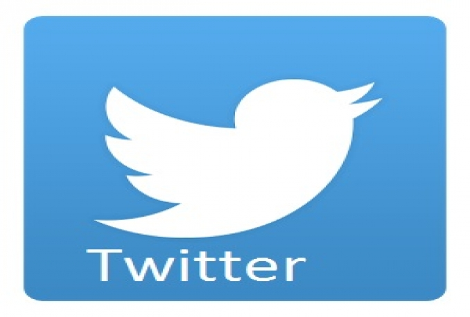 Give you 2000+ REAL Twitter Followers Permanent