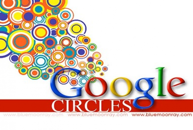 I Give You Real & Non drop 500+ Google Plus Followers To Your Circle
