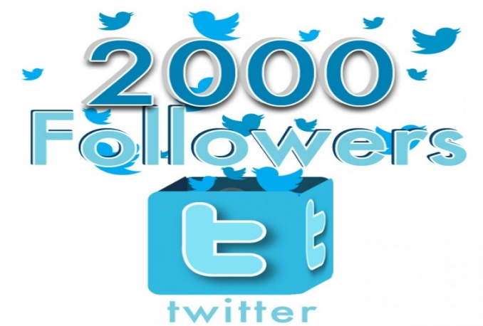 give you 2000+ High Quality No eggs Guaranteed Non Drop twitter follower