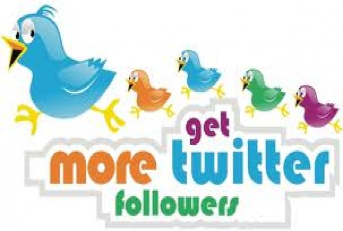 Twitter 150,000+Stable/NON Drop/Fast Followers.