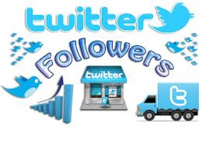 Twitter 180,000+Stable/NON Drop/Fast Followers.