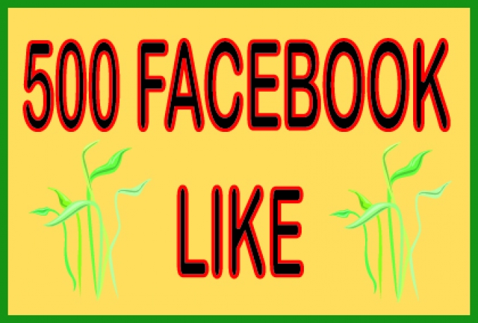 Super Fast Speed 500 Non Drop Facebook Facebook Page likes