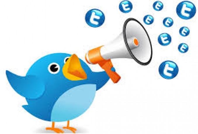 send your twitter retweed 1000 retweets. Retweets will promote your business and build social media backlinks to your website and get more active followers