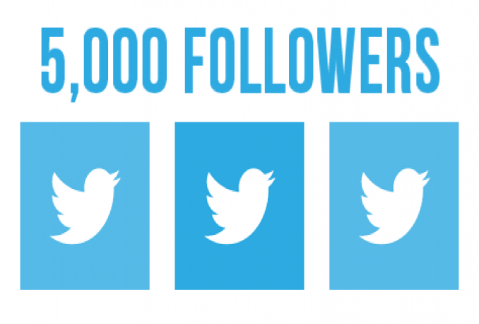 give you 5000 followers in your twitter account
