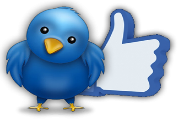 Give You Real, Permanent & Human Verified Active 100+ Twitter Followers