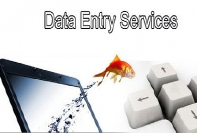 offer Data Entry Services