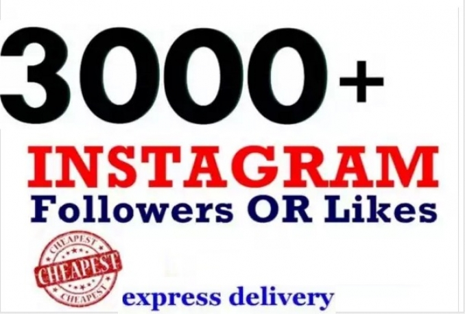 add 3000 high quality Instagram or twitter followers