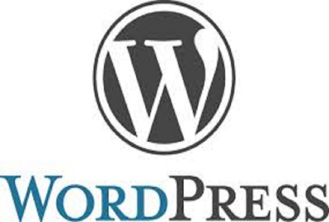 make you a wordpress website