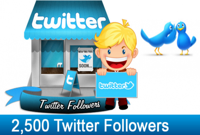 provide 2500 twitter follower with out needing password