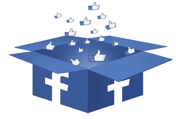 GIve you 800 Facebook Page likes