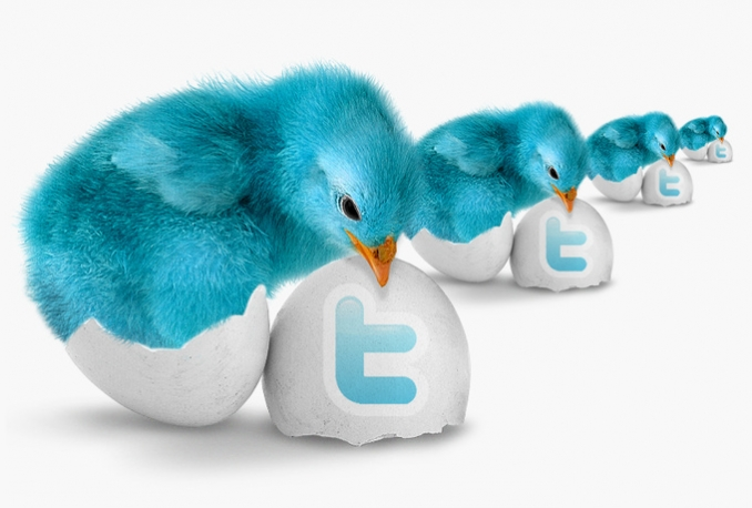 Gives you 2000+Guaranteed Twitter Real Followers.