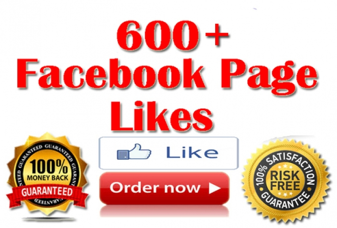 provided 600+ real non-drop facebook fanpage likes for $5