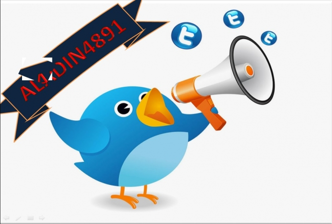 Give You 1500 HQ Twitter Followers Fast