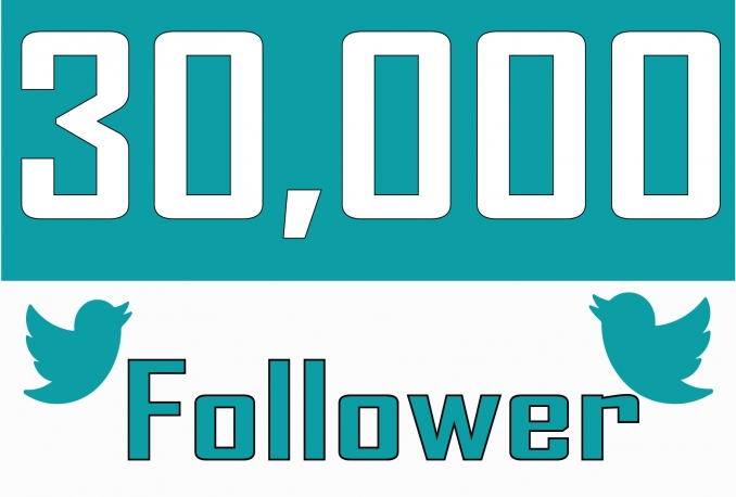 Add 30,000 Twitter Followers