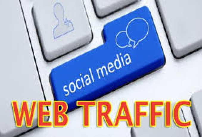 Deliver 30,000 USA real traffic