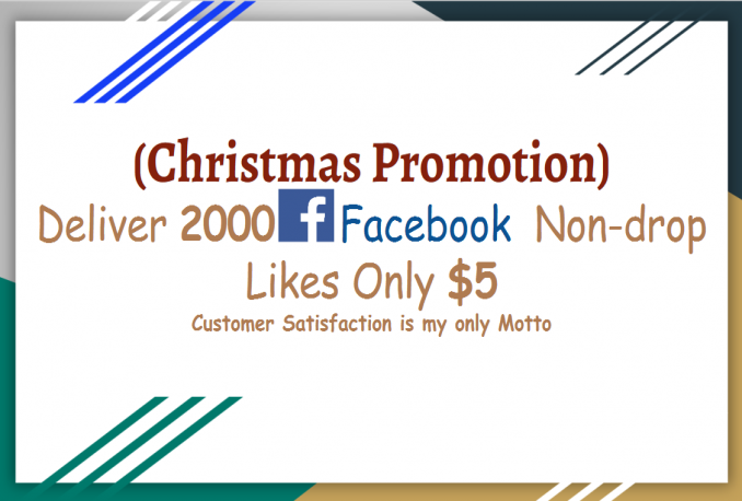 deliver 2000 Facebook Fan Page Likes deliver 800 YouTube Video Likes (Christmas Promotion)