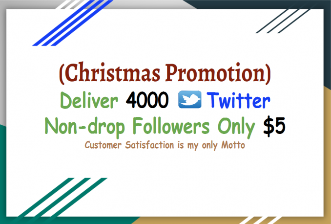 deliver 4000 Twitter Followers