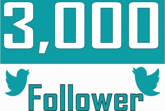 add 3000+ twitter followers in your twitter account fast
