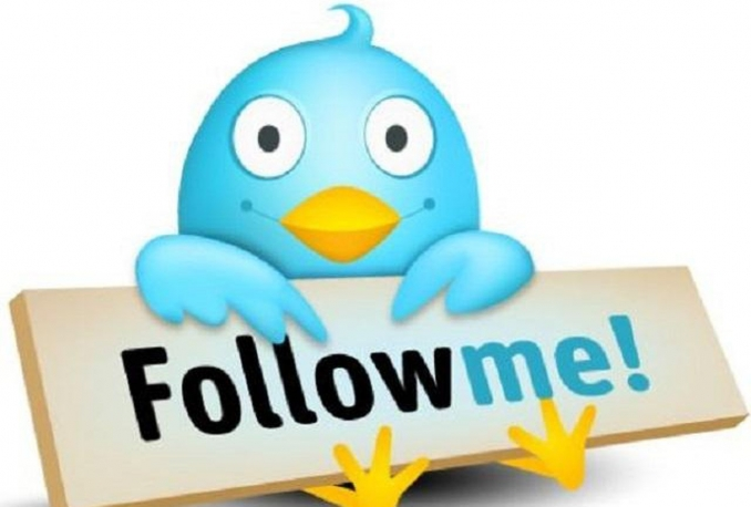 Give You Organically 3000 Twitter Followers