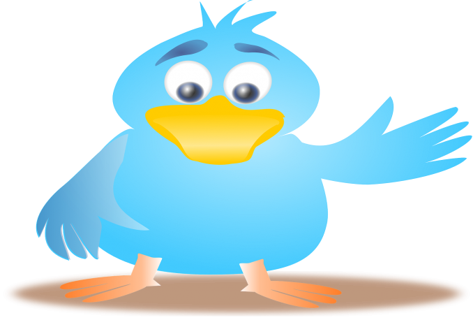 add 300+ High Quality Twitter followers OR 150 USA HQ followers