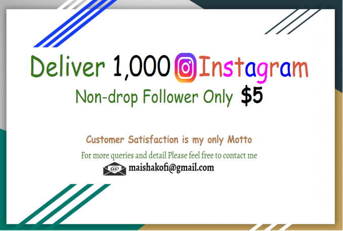 Give you 1000+ REAL Instagram Followers